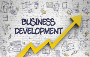 Business Development, Facilitation, and Matchmaking - IT&B CONSULTANCY